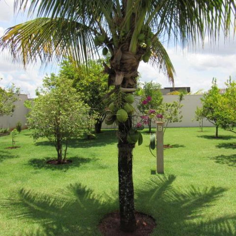 Comprar Casa / Condomínio em Jardinópolis apenas R$ 890.000,00 - Foto 5