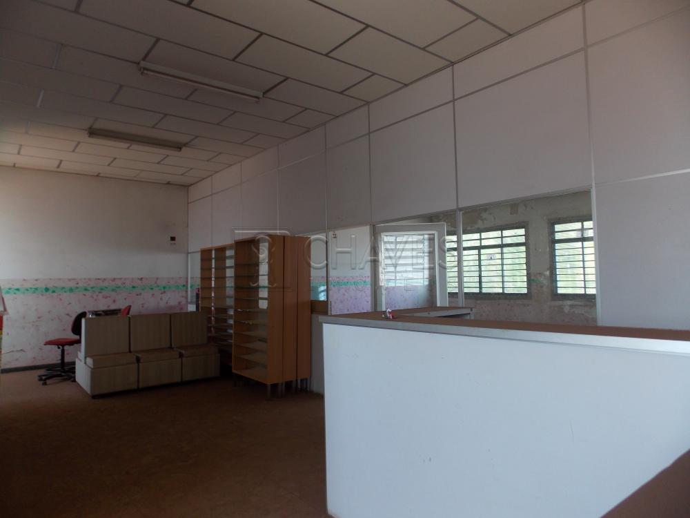 Alugar Comercial / Salão em Ribeirão Preto apenas R$ 1.600,00 - Foto 3