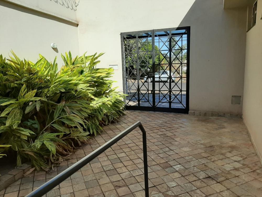 Alugar Comercial / casa em Ribeirão Preto apenas R$ 13.500,00 - Foto 8