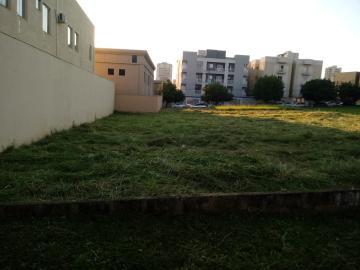 Alugar Terreno / Comercial em Ribeirão Preto. apenas R$ 970.000,00