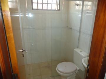 Alugar Apartamento / Padrão em Ribeirão Preto R$ 900,00 - Foto 9