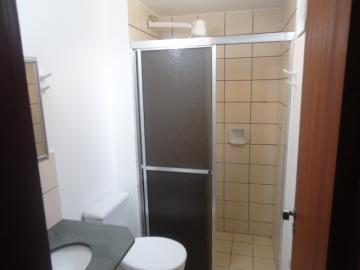 Alugar Apartamento / Padrão em Ribeirão Preto R$ 500,00 - Foto 8